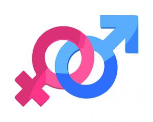 gender-312411__340