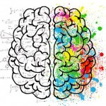 バイアグラ(シルデナフィル)が脳血管スパズム(攣縮)に有効な可能性