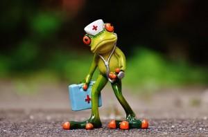 frog-1672942__340